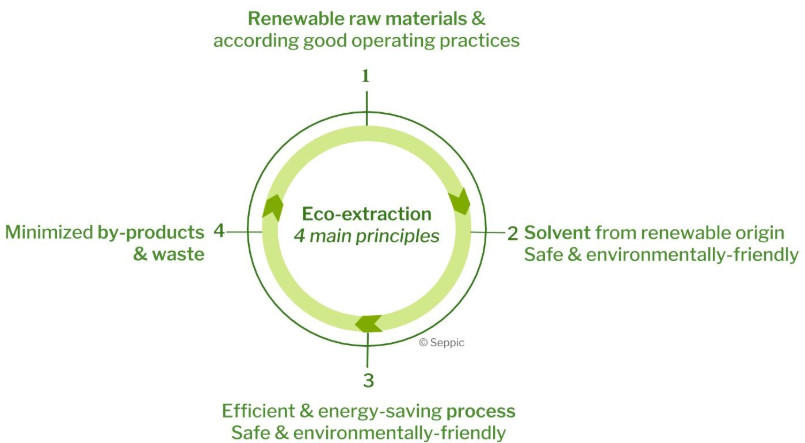 The principles of eco-extraction